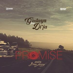 Promise-Single-550x550