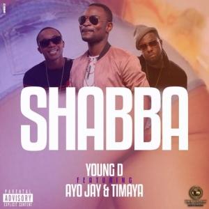 shabba-feat-ayo-jay-timaya-300x300